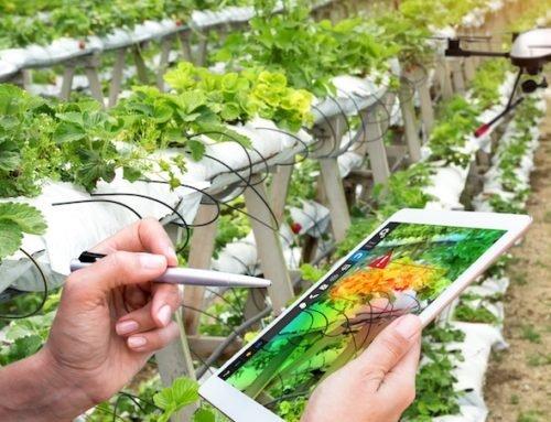 Agrotechs: estudo aborda vantagens do uso de novas tecnologias no campo