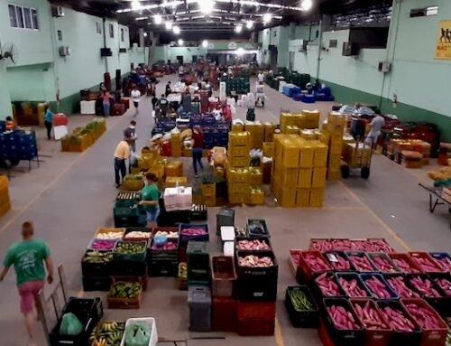 Ceasa/SC lança edital para buscar soluções inovadoras na destinação de resíduos orgânicos